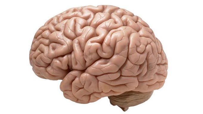 الحرمان المزمن من النوم يدفع المخ لأن يتغذى على نفسه!