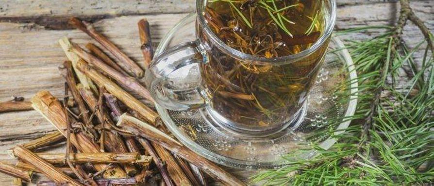 6- شاي الصنوبر: